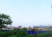 宿迁市泗阳县江南府北侧地块