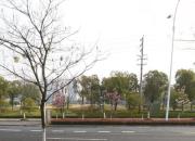 南京市高淳區花山路以西地塊2