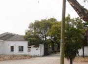 南京市高淳區商唐及化肥廠地塊