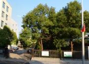 南京市高淳區王家莊地塊