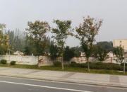 南京市高淳區體育公園地塊