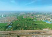 徐州港务区徐州淮海国际陆港核心片区开发项目